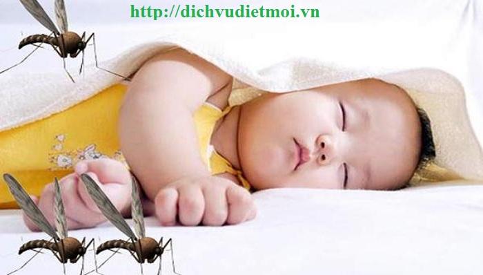 Dịch vụ diệt muỗi quận Hoàng Mai