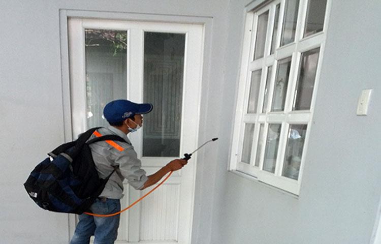 hướng dẫn cách diệt mối tường nhà