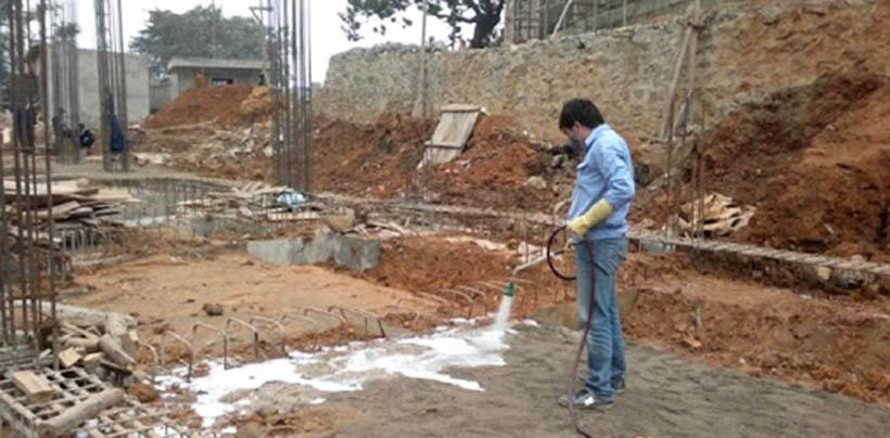 phòng chống mối công trình tại Vĩnh Phúc