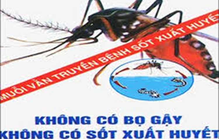 hợp đồng diệt côn trùng  tại Bình Dương