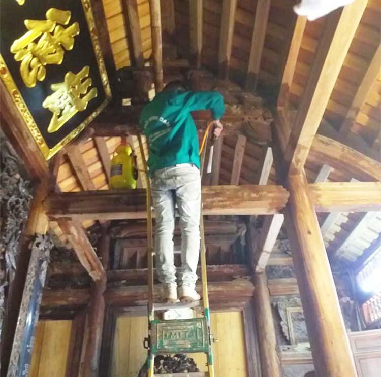 diệt mối nhà gỗ