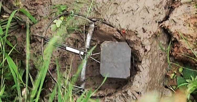 báo giá diệt côn trùng tại Bình Dương