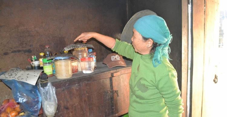 cách diệt ruồi phòng bếp