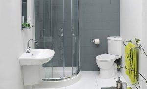 cách diệt ruồi trong nhà vệ sinh